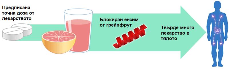 Грейпфрут и лекарства, метаболизирани от CYP3A4